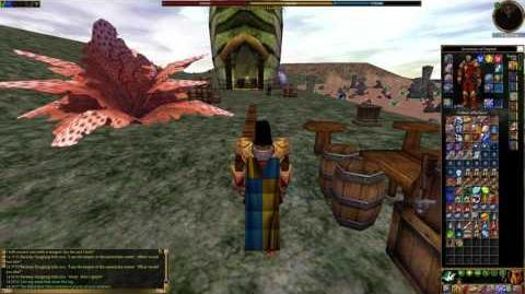 Asheron's Call - Towns- Merwart Village