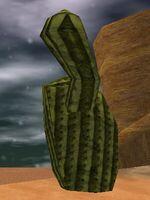 Desert Cactus Live