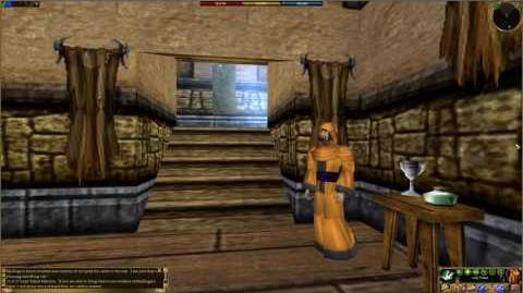 Asheron's Call - Towns- Neydisa Castle