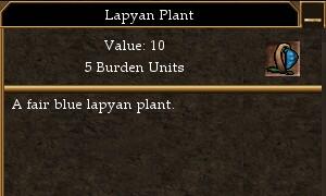 Lapyan Plant