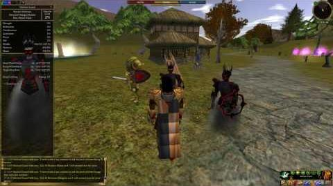 Asheron's Call - Towns- Tou-Tou