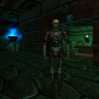 Skull of High Acolyte Quest Live 4
