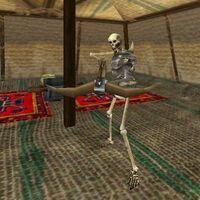 25.5S, 3.4E - Undead Encampment 2 Live