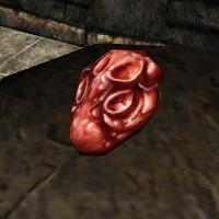 Eleonora's Heart Live