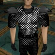 Empyrean Scalemail Shirt Live