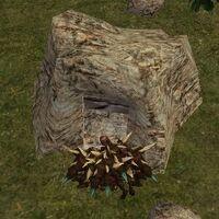 34.5S, 68.3E - Shreth Cave Live