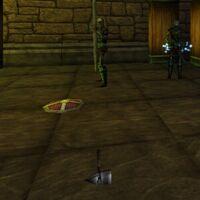Trothyr's War Hammer and Shield Floor Spawn Live