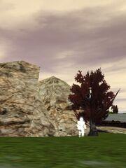 Stone of Yanshi Live