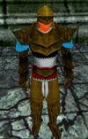 Haebrean Armor Berimphur Live