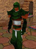 Seasoned Explorer Armor Live