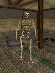 Skeleton Lord (Skeleton Tent) Live