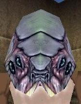 Chittick Mask Live