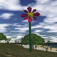 39.4S, 84.9E - Strange Giant Flower Live