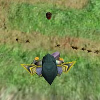 Mini Creatures Walking Live