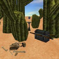 21.6S, 9.7E - Cactus Stand Live 2