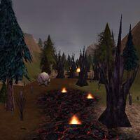 Burning Wood Live
