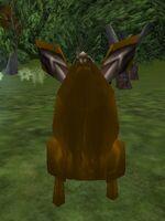 Hulking Bunny Live