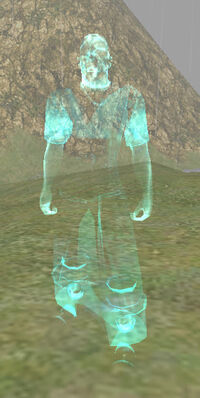 Spectre of Rashan Twoblades