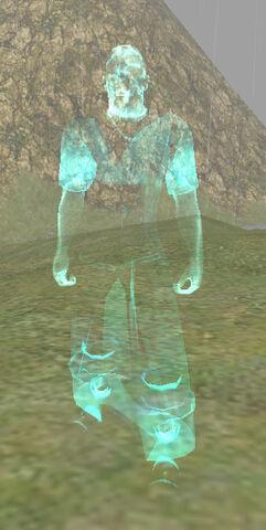 File:Spectre of Rashan Twoblades.jpg