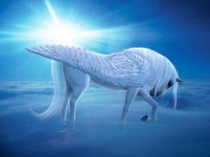 Pegasus-in-sunshine 422 13380