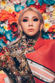 CL-hello-bitches-promo6.png
