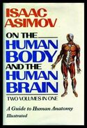 A human bnb