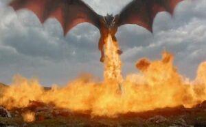 Dragon Fire Toasty