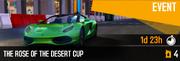 Dubai Cup (17)