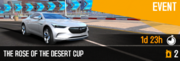 TRTD Cup (4)