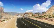 Nevada banner a8