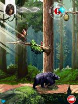AC3M-Bear