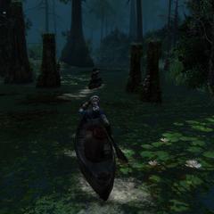 艾芙琳乘独木舟穿越河口