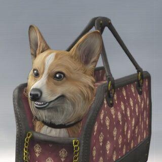 迪斯雷利的宠物狗<a href=