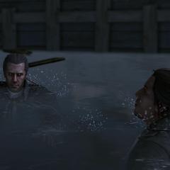 海尔森和康纳在纽约港游泳
