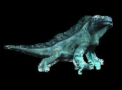 AC4DB - Iguana