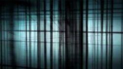 Animus,-black-room