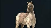ACOD Egyptian Horse Phobos Skin