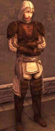 Male Assassin Armor Level 3
