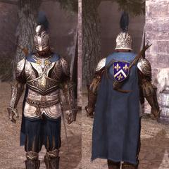 法国队长铠甲