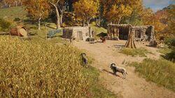 ACOd-Makedonia-Goatfarm