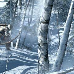 Connor jagt mit einem Bogen Tiere