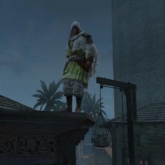 Vali at the Assassins' headquarters