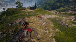 ACOD Kassandra investigating the abandoned lookout campsite