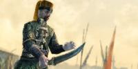 Zwinni strażnicy (grafika symbolizująca) (ACR) (by Kubar906)