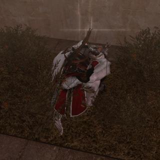 Ezio dérobant le contenu du coffre