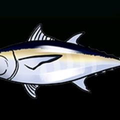 Blackfin Tuna - 稀有度:非常稀有,尺寸:中