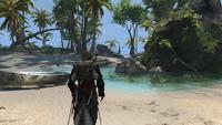 Roślinność na wyspie Abaco by DarknessEyes23