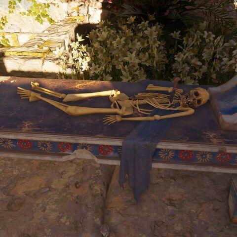 阿里阿德涅的骸骨