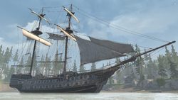 AC3 Aquila Homestead Bay