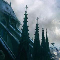 Toits de Notre-Dame